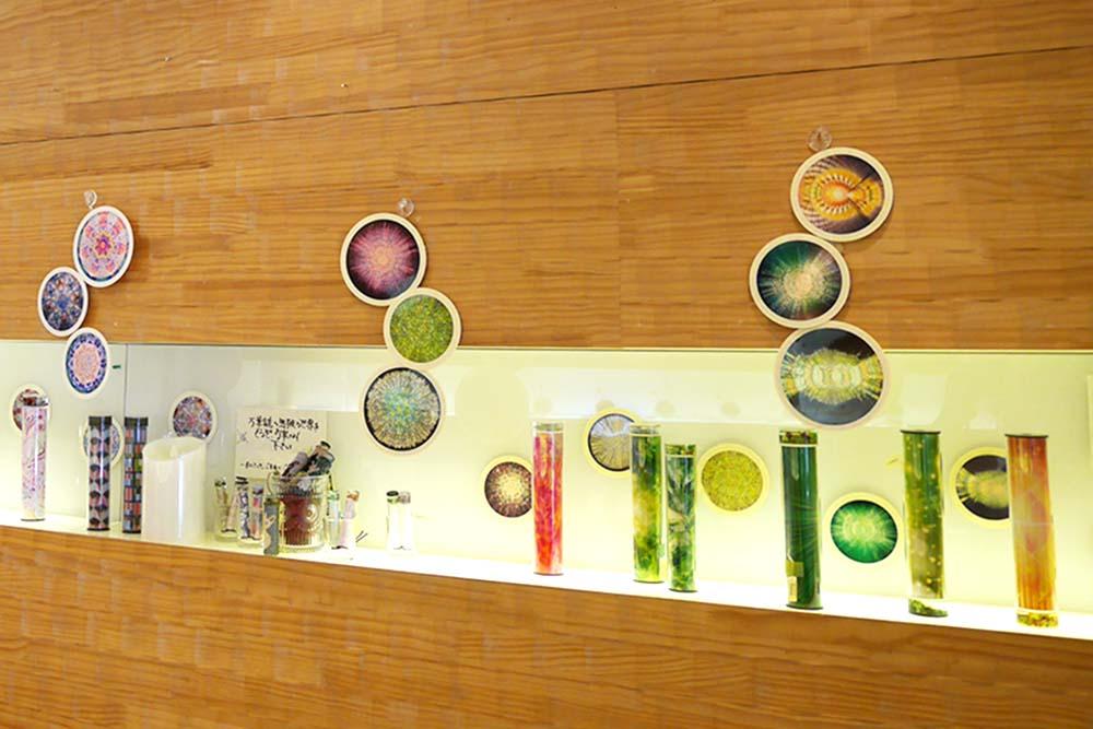「透緑彩」展示
